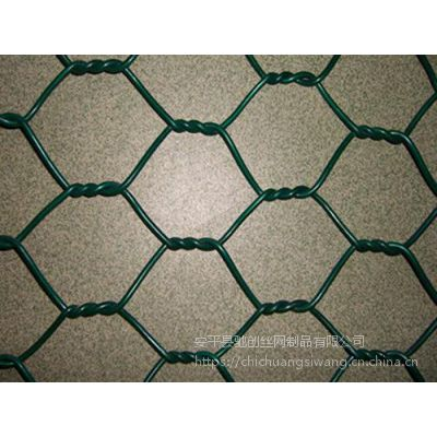 生态格宾石笼网防护性河道挡墙