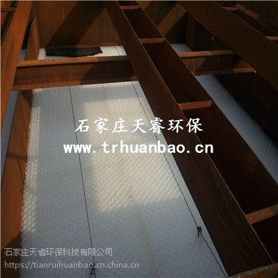 黑龙江佳木斯聚丙烯斜管 对工业有机废水和城市污水进行生化处理