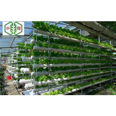 华耀立柱式无土栽培槽自动化种植设备