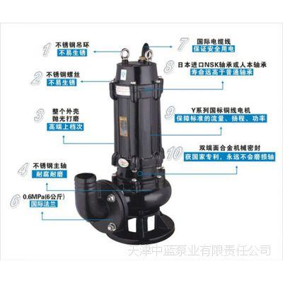 天津污水泵提升污水排污泵设备厂家供应