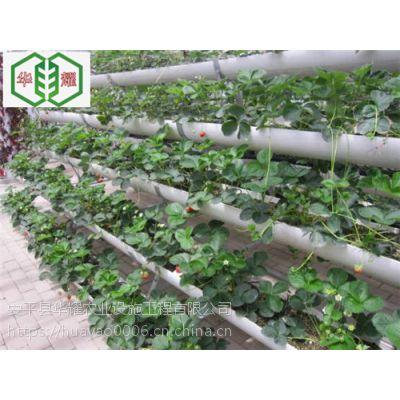 温室立柱式无土栽培槽新品上市--河北华耀生产