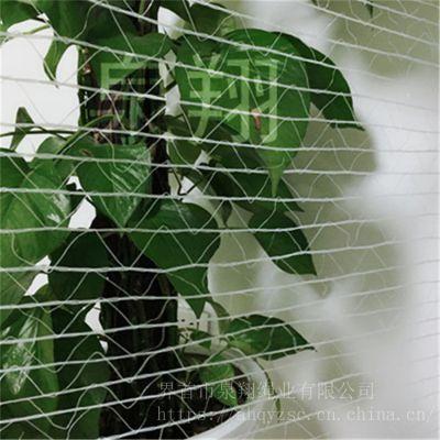 圆捆机打包专用网/牧草专用打包网/牧草打捆网/捆草网/塑料PE网