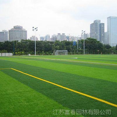 厂家销售仿真草坪 假草皮户外塑胶草幼儿园 人造地毯草坪绿化