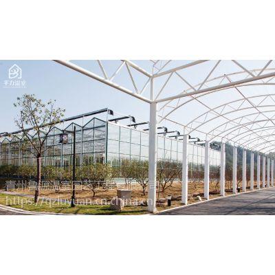 河北秦皇岛智能花卉园艺大棚温室阳光房1万平方、轻钢纹络型制作厂家