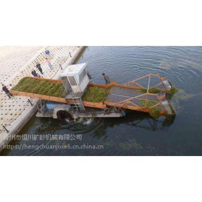 广西水白菜粉碎打捞船 厂家定制割草船