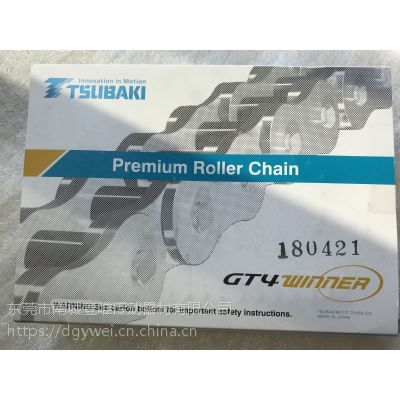 TSUBAKI链条RF06B-2欧洲规格B型链椿本双排链现货供应