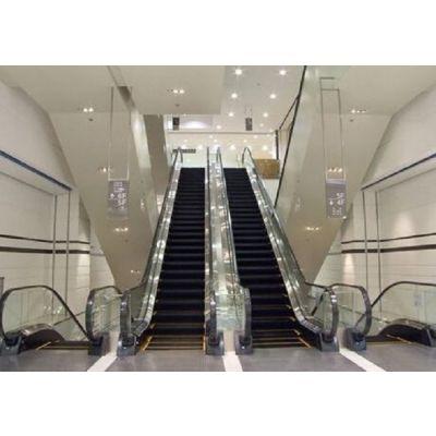 3吨汽车电梯-京珠电梯厂家-广西汽车电梯