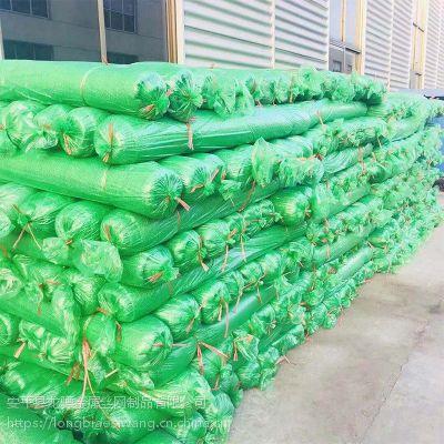 扁丝盖土网厂家 遮阳防尘网 工地绿化网