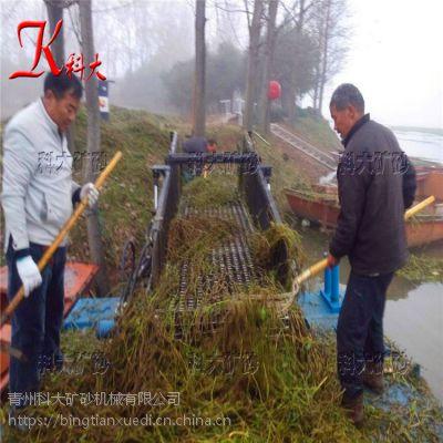 南非水葫芦清理设备 收集水草粉碎机械