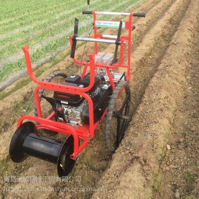 厂家供应蔬菜播种机胡萝卜播种机
