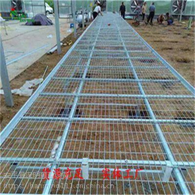 江苏移动苗床网生产加工-标准规格尺寸