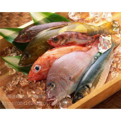 厦门进口大西洋鲑鱼不为人知的秘密