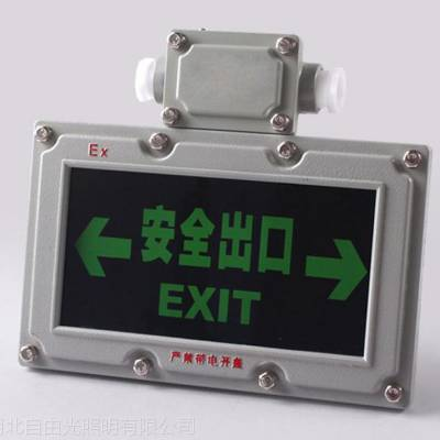 BYY防爆安全出口路标灯 蓄电池单双面