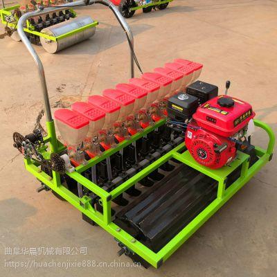 陕西有卖谷子播种机的吗 华晨6行高粱播种机 桔梗精播机厂家