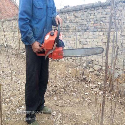 园林绿化起苗机 单人手提式挖树机