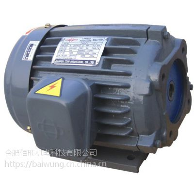 SANYOU油泵电机