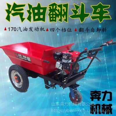 两轮拉水泥车 高山上好用的运载机 奔力FD-MF6