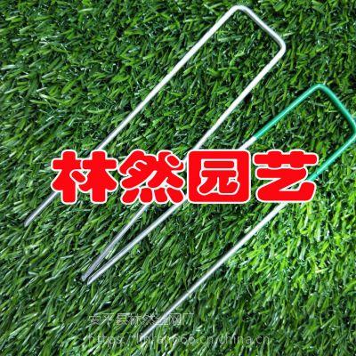 土工格栅U型钉 工程用钉 方头钉 盖土网钉 紧固件铁钉 球场固定钉