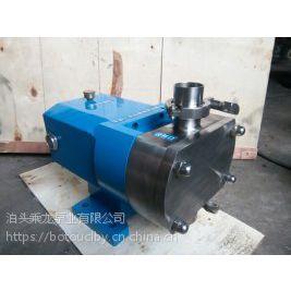XYB-66食品卫生级转子泵/不锈钢转子泵价格/可以输送食品的泵