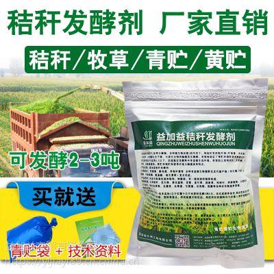 青储玉米秸秆养牛羊添加了益生菌效果怎么样