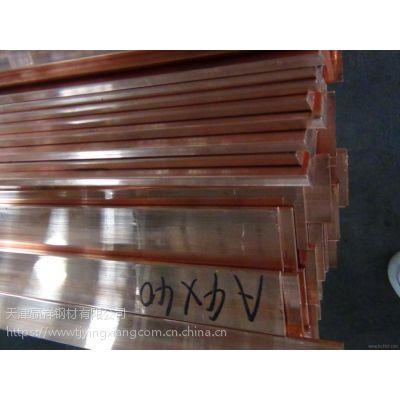 天津铜排批发 导电汇流排 母线伸缩节 T2 镀锡 打孔铜排 规格齐全 可加工