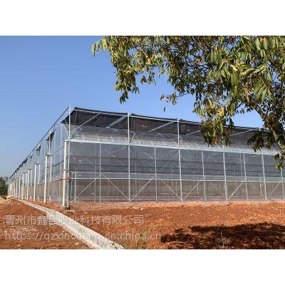 湖南娄底樱桃种植大棚温室椭圆管骨架、7米镀锌立柱30000平米工程建造厂家