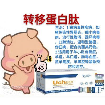 羊拉稀怎么治疗羊拉稀药转移蛋白肽羊怎么催肥保健