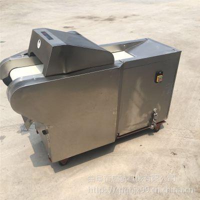 桑叶养殖切丝机厂家 启航酸豆角切段机 多功能黄瓜切片机
