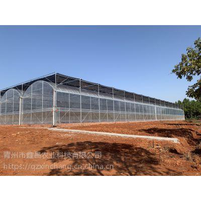 湖北咸宁连栋蔬菜大棚温室3米拱高、30000平方12丝po膜外覆盖型承建单位