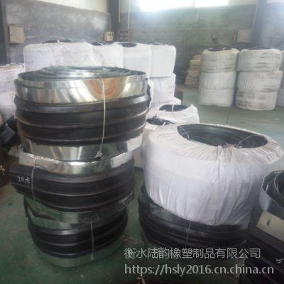 玉环市专卖钢边橡胶止水带300mm*6mm/备铁式止水带