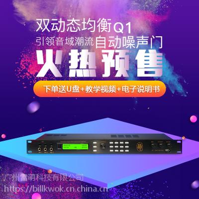 雷萌科技Q1KTV卡拉OK娱乐音频处理器前级效果器