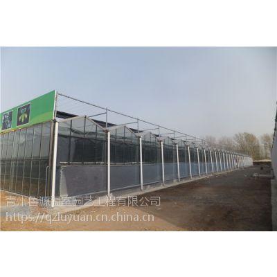 安徽淮南农业扶贫阳光板大棚温室8mm顶覆盖、全自动控温开窗1万平承接厂家