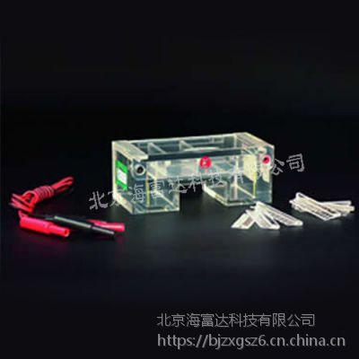中西 琼脂糖水平电泳槽 型号:WJ/DYCP-31C库号:M393574