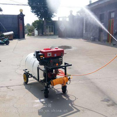 大容量柴油喷雾器/高效手推式大面积喷药机/汽油消毒喷药器