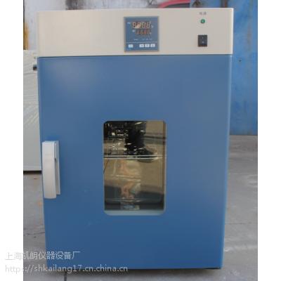 立式鼓风干燥箱DHG-9425A