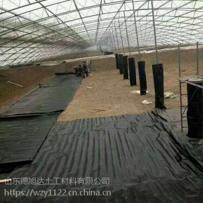 河南鱼塘护坡防渗膜厂家护坡防鱼儿打洞防水土流失