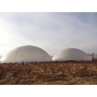新型温室大棚-绣田农业(在线咨询)-北京温室大棚