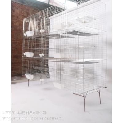 厂家定制12位全套底网鸽笼 16位不锈钢鸽笼 加粗加密镀锌养殖笼具