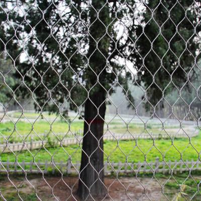 保定工厂直销304不锈钢绳网动物园围栏网 佰纳金属丝网制造工厂定做