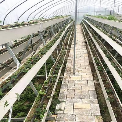 常州育苗灌溉专用移动喷灌机厂家批发