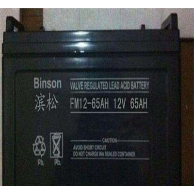 BINSON蓄电池量大从优厂家直销