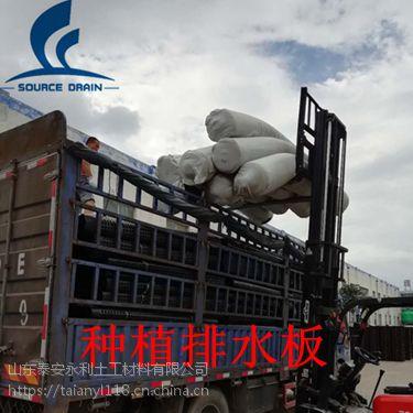 雅安种植屋面排水板厂家供应