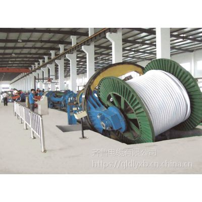 供应屏蔽电压1千伏- VV-3*6齐鲁牌电缆
