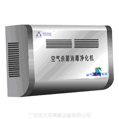空气杀菌消毒净化机,广州大环臭氧厂家