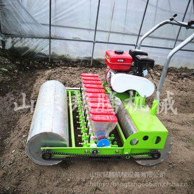 青菜浅播种机 快速小粒蔬菜精播机 大棚种菜播种机