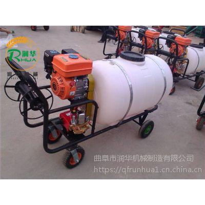 桃树防虫打药机 便捷式喷雾机 杀虫除草喷雾器