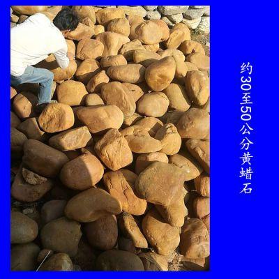 约30至50公分黄蜡石多少钱一个 英德黄蜡石厂家在哪里 园林石批发