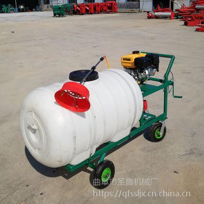 手推式高压喷雾器 园林高压喷雾器 圣鲁牌
