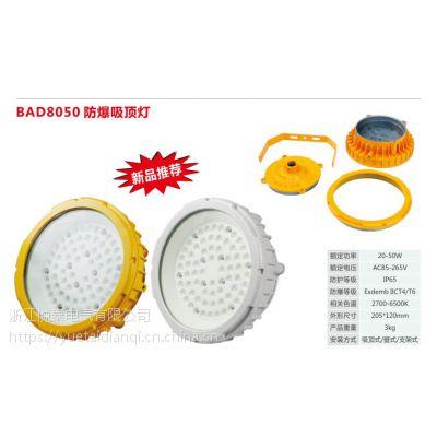 悦泰 GB8050 印刷厂防爆照明防爆灯 110W