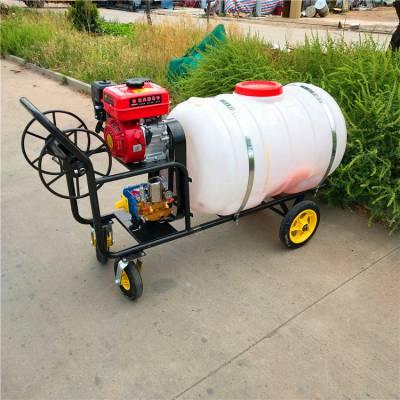 园林专用手推打药机 7.5马力汽油动力喷雾机 高压气雾打药机